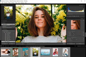 Free simple online photo editor for photographer | top 5 list
